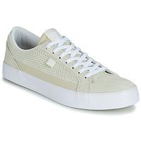 Obuća Muškarci  Niske tenisice DC Shoes LYNNFIELD SE M SHOE SFW Bijela