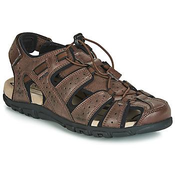 Obuća Muškarci  Sportske sandale Geox UOMO SANDAL STRADA Smeđa
