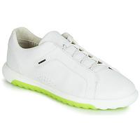 Obuća Muškarci  Niske tenisice Geox U NEXSIDE Bijela