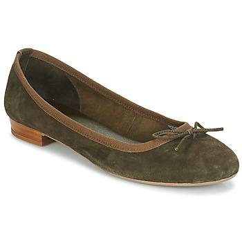 Obuća Žene  Balerinke i Mary Jane cipele André CINDY Kaki