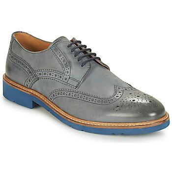 Obuća Muškarci  Derby cipele André FLOWER Siva / Blue