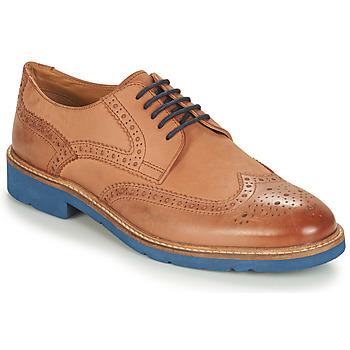 Obuća Muškarci  Derby cipele André FLOWER Smeđa / Blue