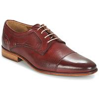 Obuća Muškarci  Derby cipele André LIVING Bordo