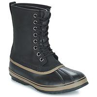 Obuća Muškarci  Čizme za snijeg Sorel 1964 PREMIUM T Crna