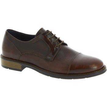 Obuća Muškarci  Derby cipele Raymont 625 BROWN marrone