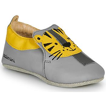 Obuća Dječak  Papuče Catimini CALINOU Siva / Žuta