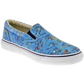 Obuća Muškarci  Slip-on cipele Sperry Top-Sider  Multicolour