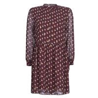 Odjeća Žene  Kratke haljine Betty London LILY Bordo