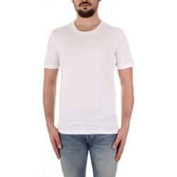 Odjeća Muškarci  Majice kratkih rukava Selected 16057141 Bianco