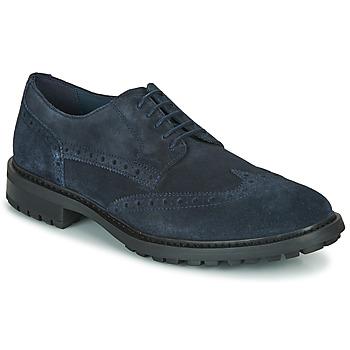 Obuća Muškarci  Derby cipele Geox U BRENSON D