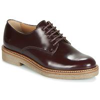 Obuća Žene  Derby cipele Kickers OXFORK Bordo