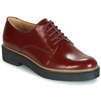 Obuća Žene  Derby cipele Kickers OXFORK Red