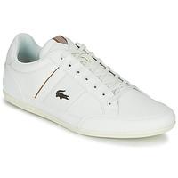 Obuća Muškarci  Niske tenisice Lacoste CHAYMON 319 1 Bijela