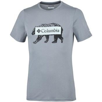 Odjeća Muškarci  Majice kratkih rukava Columbia Box Logo Bear Siva