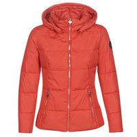 Odjeća Žene  Pernate jakne Les Petites Bombes W19V8503 Red