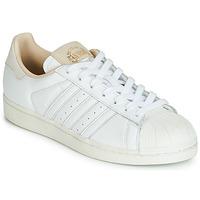 Obuća Niske tenisice adidas Originals SUPERSTAR Bijela / Bež