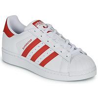 Obuća Djeca Niske tenisice adidas Originals SUPERSTAR J Bijela / Red