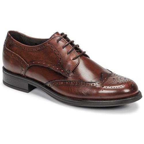 Obuća Muškarci  Derby cipele Carlington LOUVIAN Smeđa