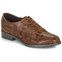 Obuća Žene  Derby cipele André MOBI Smeđa