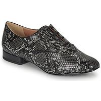 Obuća Žene  Derby cipele André VIOLETTE Siva