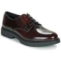 Obuća Muškarci  Derby cipele André CHAD Bordo