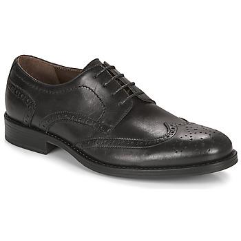 Obuća Muškarci  Derby cipele André NORY Crna