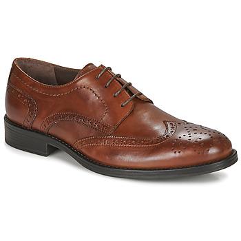Obuća Muškarci  Derby cipele André NORY Smeđa