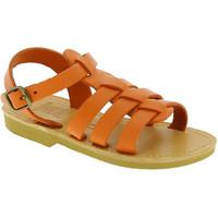 Obuća Djeca Sandale i polusandale Attica Sandals PERSEPHONE CALF ORANGE arancio