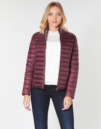 Odjeća Žene  Pernate jakne JOTT CHA Boja patlidžana