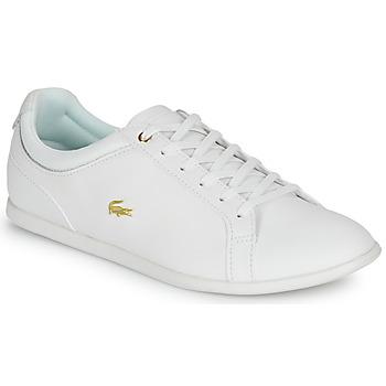 Obuća Žene  Niske tenisice Lacoste REY LACE 120 1 CFA Bijela / Gold