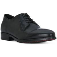 Obuća Muškarci  Derby cipele Eveet CALIF NERO MAYA Nero