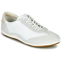 Obuća Žene  Niske tenisice Geox D VEGA Bijela / Siva