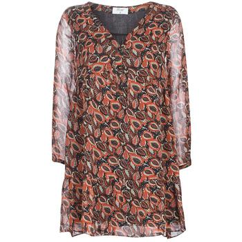 Odjeća Žene  Kratke haljine Betty London LETICIA Crna / Red