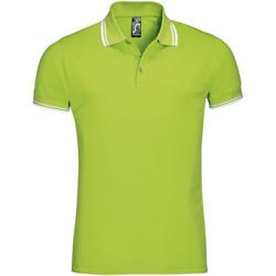 Odjeća Muškarci  Polo majice kratkih rukava Sols PASADENA MODERN MEN Verde