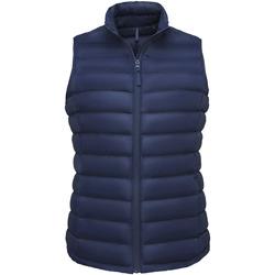 Odjeća Žene  Pernate jakne Sols WILSON BW FEATHERS Azul