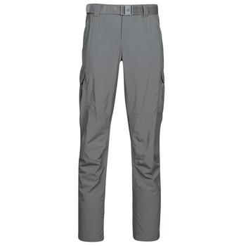 Odjeća Muškarci  Cargo hlače Columbia SILVER RIDGE II CARGO PA Siva
