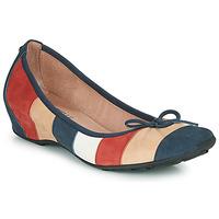 Obuća Žene  Balerinke i Mary Jane cipele Mam'Zelle FLUTE Blue / Bež / Bordo