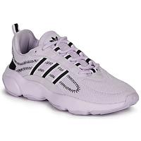 Obuća Žene  Niske tenisice adidas Originals HAIWEE W Ljubičasta
