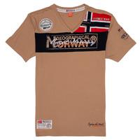 Odjeća Dječak  Majice kratkih rukava Geographical Norway JIDNEY Bež