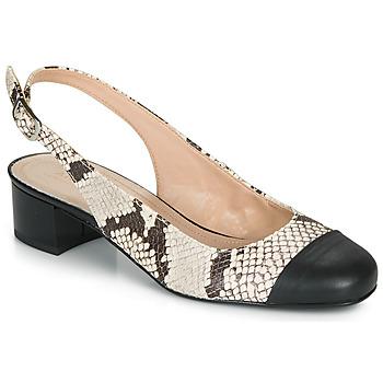 Obuća Žene  Balerinke i Mary Jane cipele André POEMETTE Bež