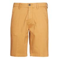 Odjeća Muškarci  Bermude i kratke hlače Timberland SQUAM LAKE STRETCH TWILL STRAIGHT CHINO SHORT Bež