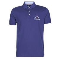 Odjeća Muškarci  Polo majice kratkih rukava Tommy Hilfiger ARCH ARTWORK REGULAR POLO Blue