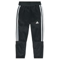 Odjeća Dječak  Donji dio trenirke adidas Performance DANIELA Crna