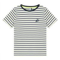 Odjeća Dječak  Majice kratkih rukava 3 Pommes NORDINE Žuta