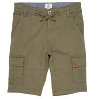 Odjeća Dječak  Bermude i kratke hlače Timberland TAO Zelena
