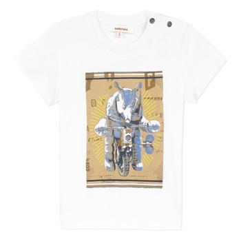 Odjeća Dječak  Majice kratkih rukava Catimini LARIBI Bijela