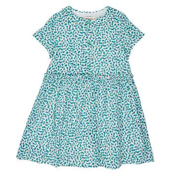 Odjeća Djevojčica Kratke haljine Catimini ELLA Zelena / Blue