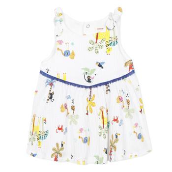 Odjeća Djevojčica Kratke haljine Catimini BIXENTE Bijela