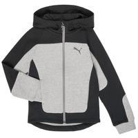Odjeća Dječak  Sportske majice Puma EVOST HOOD JKT Siva