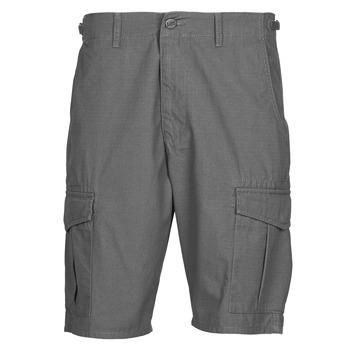 Odjeća Muškarci  Bermude i kratke hlače Lee CARGO SHORT FATIGUE Steel / Siva